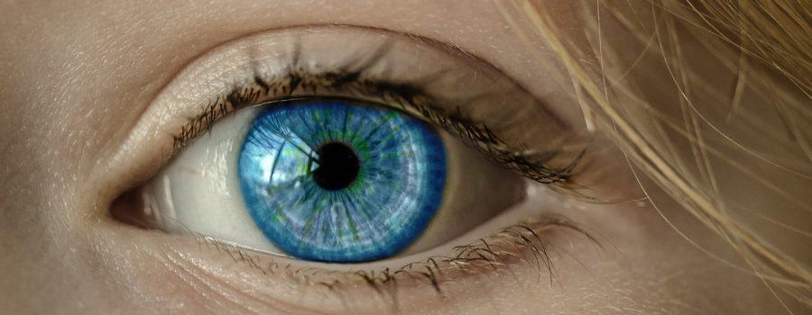 under brown eyes is blue